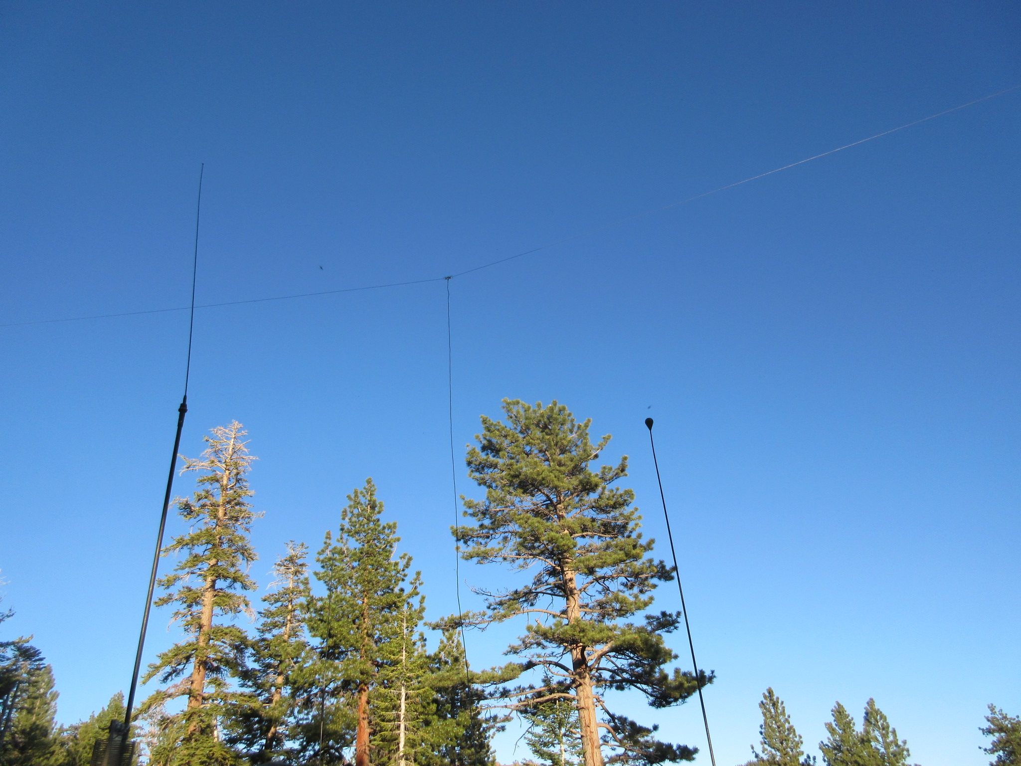 Bush antenna systems
